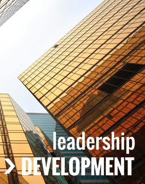 Leadership Training 300