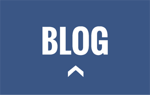 blog300