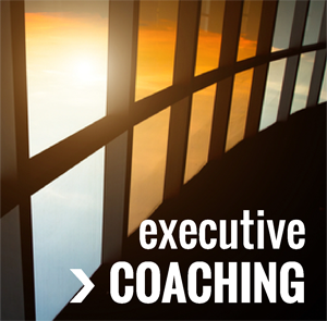 executive coaching300