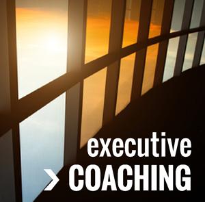 executive coaching300